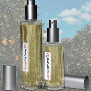 aromatický pánský parfém